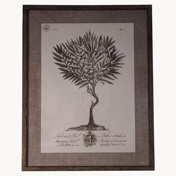 Kew Botanical Garden Print