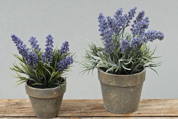 Faux Potted Lavender