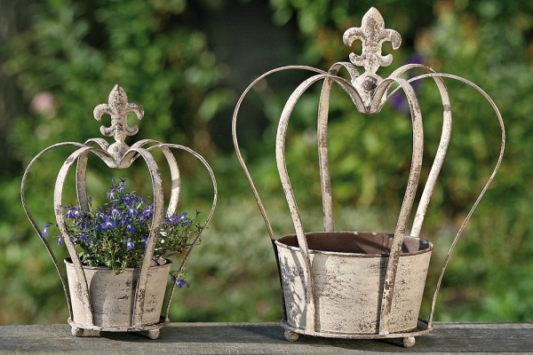Rustic Crown Planter
